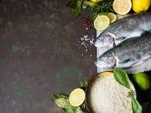 Een paar van verse forel, citroenen, laurierblad, kruiden en rijst in een kom op een donkere achtergrond Royalty-vrije Stock Fotografie