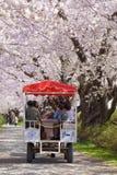 Een paard-gedreven vervoer in Sakura-tunnel, Kitakami Royalty-vrije Stock Afbeeldingen