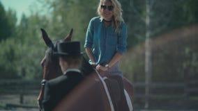 Een paard met een zadeltribune nog Horseback het berijden stock video