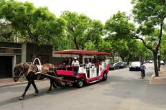 Een paard trekt door paarden getrokken op de weg Royalty-vrije Stock Afbeelding