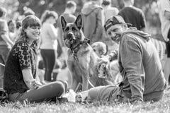 Een paarzitting met hun hond in het park bij een hond toont royalty-vrije stock foto's
