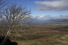 Een panorama aan Loch Lomond en de Schotse Hooglanden stock foto's