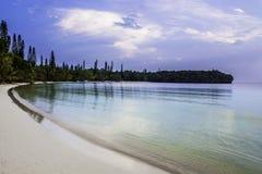 Een paradijsstrand van eiland van pijnbomen royalty-vrije stock fotografie