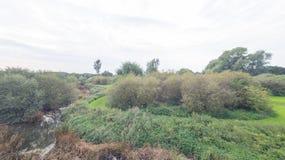 Een park in recent September Stock Fotografie