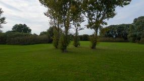 Een park in recent September Royalty-vrije Stock Afbeelding