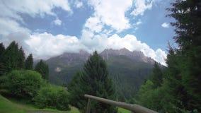 Een park van groene naaldbomen met lange rotsachtige bergen achter welke aanraking de wolken stock video
