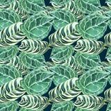 Een patroon van groene decoratieve gevlekte palmbladen royalty-vrije illustratie