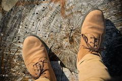 Een persoon met broeken en schoenen in natuurlijke warme kleuren, tribunes op houten boomstam, persoonlijk standpunt stock afbeelding