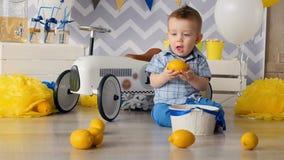 Een peuter speelt met citroenen en probeert om hen te bijten stock video