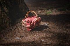 Een picknickmand met een rode en witte doek wordt behandeld die stock foto