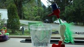 Een plastic die het drinken vogel met water en kwik wordt geactiveerd stock video