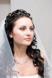 Een portret van de bruin-haired bruid Stock Foto