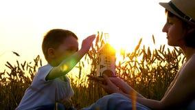Een portret van een moeder en een kind op een tarwegebied bij zonsondergang is zonnig De vrouw houdt, en het kind houdt en roteer stock footage