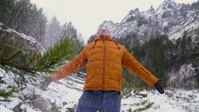 Een prachtige de winterdag in bergen stock videobeelden