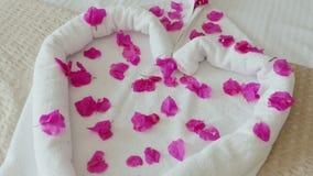 Een prettige verrassing van het hotel voor gasten Hart van handdoeken en bloembloemblaadjes dat wordt opgemaakt Een grote vakanti stock videobeelden