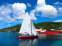 Een ras die traditionele Caraïbische rubberboten met behulp van Stock Afbeelding