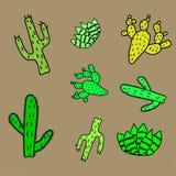 Een reeks cactussen De creatieve textuur van de babycactus royalty-vrije illustratie