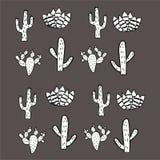 Een reeks cactussen De creatieve textuur van de babycactus stock illustratie