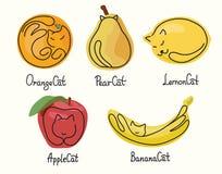 Een reeks grappige illustraties van katten en vruchten in verschillend stelt Stock Fotografie
