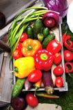 Een reeks groenten in een houten doos Stock Afbeelding