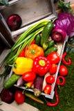 Een reeks groenten in een houten doos Stock Foto's