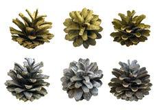 Een reeks kegels voor een Kerstmisdecor Geïsoleerd op witte backgrou stock foto's