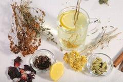 Een reeks kruiden van traditionele geneeskunde stock fotografie