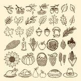 Een reeks met de hand gemaakte de herfstelementen van aard Elementen van het ontwerp voor Dankzegging en het Feest van de Herfst stock illustratie