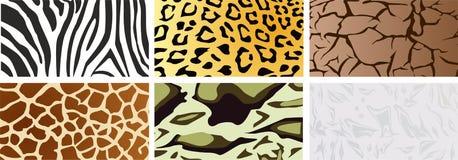 Een reeks natuurlijke texturen vector illustratie