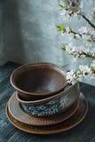 Een reeks van oud ceramisch vaatwerk Een reeks platen, kommen Een tak van abrikozen Donkere houten achtergrond royalty-vrije stock afbeelding