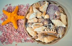Een reeks van verschillende zeeschelpen en zeester in een mand op de kleine roze stenen Stock Foto