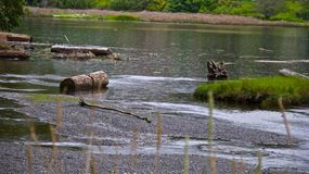 Een regenachtige dag bij de lagune Royalty-vrije Stock Afbeeldingen