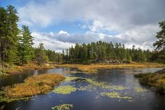 Een regenachtige dag op een eiland in een meer tijdens de herfst royalty-vrije stock afbeeldingen
