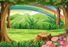 Een regenboog en een bos vector illustratie
