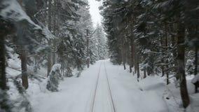 Een reis op een oude trein door een dik dicht sneeuwbos stock videobeelden