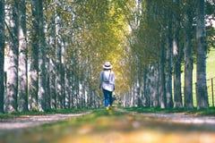 Een reizigersvrouw loopt op de middengangmanier van groene pijnboom voor stock foto's