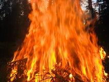 Een reusachtige en ongelooflijk mooie brand Royalty-vrije Stock Foto