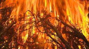 Een reusachtige en ongelooflijk mooie brand Royalty-vrije Stock Afbeelding