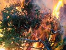 Een reusachtige en ongelooflijk mooie brand Stock Fotografie