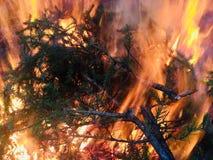 Een reusachtige en ongelooflijk mooie brand Stock Afbeeldingen