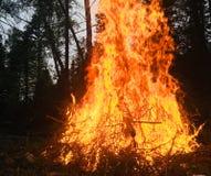 Een reusachtige en ongelooflijk mooie brand Stock Afbeelding