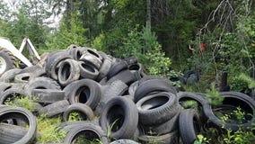 Een reusachtige stortplaats van oude banden in het hout Het onwettige dumpen van gebruikte banden ecologische crisisfoto Garbagec stock videobeelden