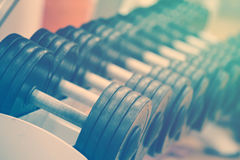 Een rij van domoren op de teller in de gymnastiek Stock Afbeeldingen