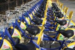 Een rij van gele fietsen deelde fietsen Stock Afbeeldingen