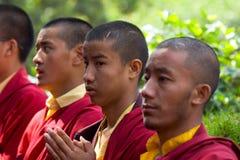 Een rij van het Boeddhistische monniken bidden Stock Foto's
