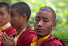 Een rij van het Boeddhistische monniken bidden Royalty-vrije Stock Foto