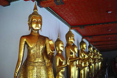Een rij van het gouden standbeeld van Boedha Stock Afbeeldingen