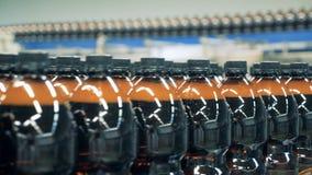 Een rij van plastic bierflessen vulde met vloeistof die zich langs de transportband bewegen stock video