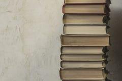 Een rijke inzameling van boeken Stock Afbeelding
