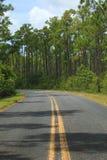 Een rijweg in het Nationale Park van Everglades, FL stock fotografie